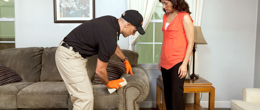 Gardena, CA carpet upholstery cleaning